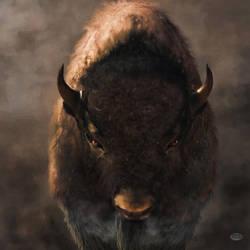 Portrait of a Buffalo by deskridge