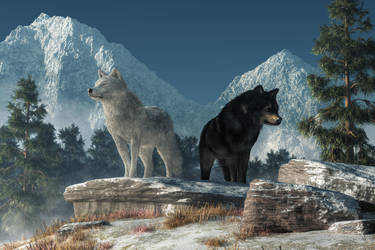 White Wolf, Black Wolf by deskridge