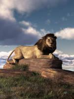 The Lazy Lion by deskridge