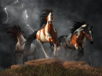 Mustangs of the Storm by deskridge