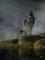 Timber Wolf by deskridge