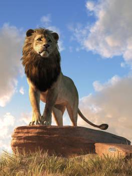 Lion - King of Beasts by deskridge