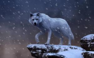 Spirit of the Blizzard by deskridge
