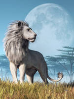 White Lion and Full Moon by deskridge
