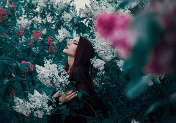 Enchantress' Garden II by Econita