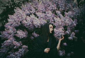 Enchantress' Garden IV by Econita