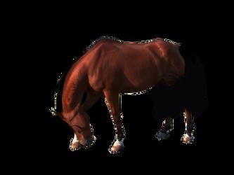 Ready to use horse by ITSDura