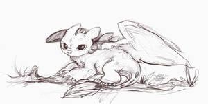 Baby Toothless Sketch by iksatriya