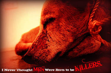 Animal Abuse by AleenaTheFox