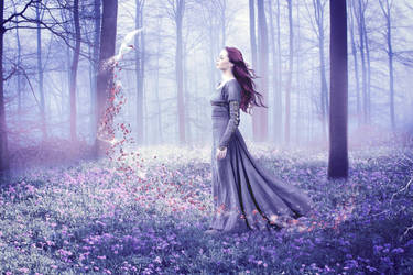 Magic In The Woods by uberchic