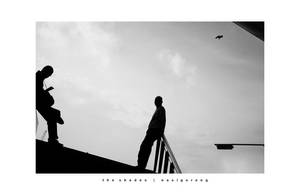 The Shades by nasigoreng