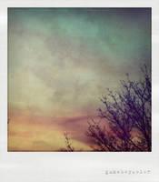 sundays by gameboycolor