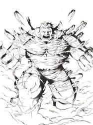 The Hulk by zwarback