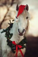 Christmas elf by carinamaiwald