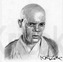 Master Windu by krizok