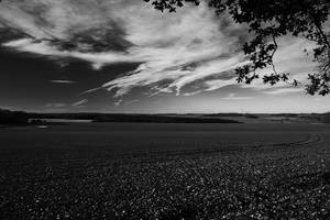 Wiltshire Downs Black and White 2 by SomersetCider