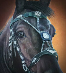 Horse Eye - Pastel Portrait Painting by Yankeestyle94