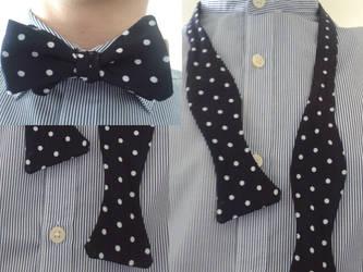 The bow tie by brzegator27