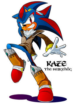 Kaze the Hedgehog Mobius Style by LiyuConberma