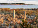 Wellfleet Harbor Autumn Beachscape by TheMightyQuinn