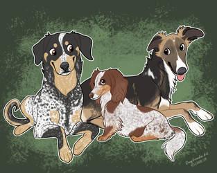 colorado hounds by danyhund