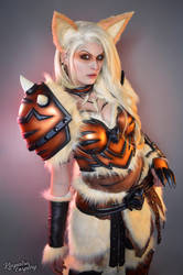 Armored Arcanine - Pokemon by Kinpatsu-Cosplay