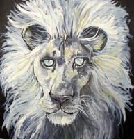 White Lion by Ljtigerlily