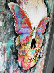 Butterfly Skull by ART-BY-DOC