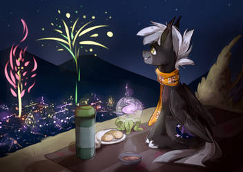 The night of the fireworks by nailinhome