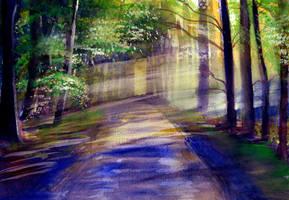 sunlit path by beckhanson