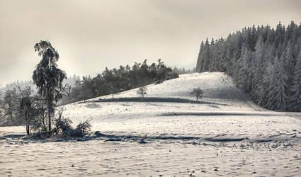 winter time by 1maliniak1