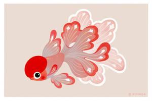 Red cap oranda by pikaole