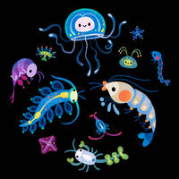 Zooplankton by pikaole