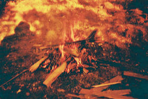 Redscale Fire by willmeister42