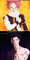 Natsu and Gray Fairy Tail 428 by Maxibostero