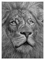 Prince of the Savannah (lion profile) by Brandonwood1000000