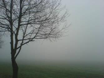 fog by cbarber37