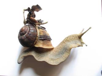 Ri na Seilidi with Shell saddle by BenPhillips