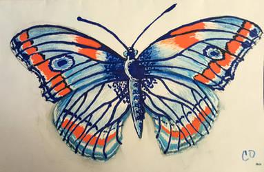 Butterfly by Aurhia