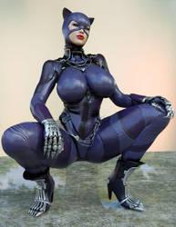 Catwoman/Regime 3DCosplay 2 by guhzcoituz