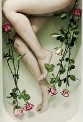 bath of roses by quadratiges