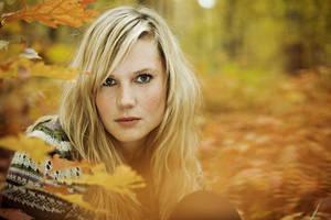 Herbsttage by quadratiges