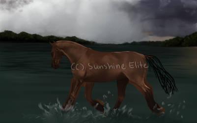 Lakeside Event by SunshineElite