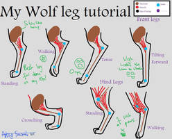 Wolf Leg Tutorial by ArtsyFursona