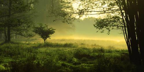 Foggy Landscape by HZ-Designs