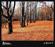 Autumn... by Murderdoll17