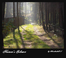 Nature's Silence by Murderdoll17