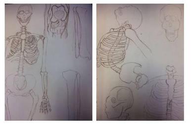 Figure Drawing Sketchbook: Week 8 by MasqueradeOfSilence