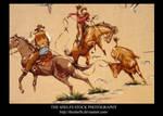 Stock Cowboy fabric by Theshelfs