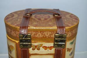 BUTTERFLY BOX STOCK 1 by Theshelfs